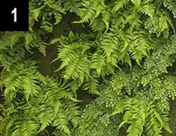 Artificial Ferns and Leaves - Made from recycled plastic