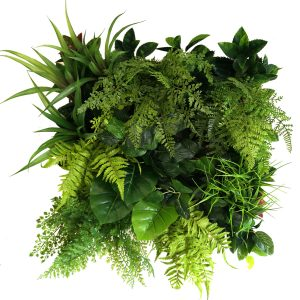 Artificial fern green wall