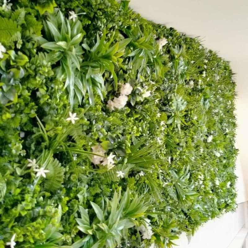 Everglade - Pretty white flowers on lush green vertical wall